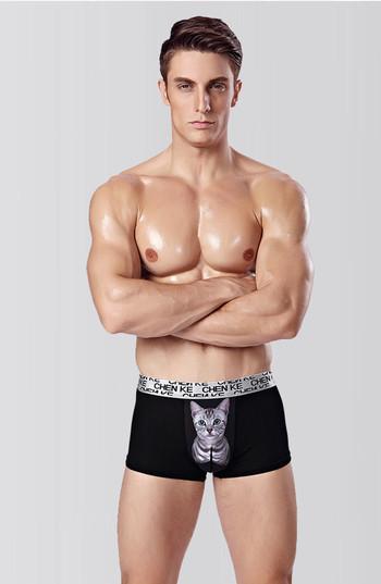 Мъжки боксерки с апликация в шест цвята