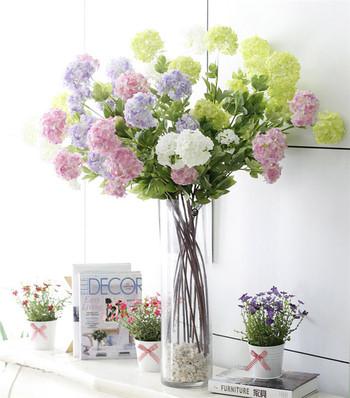 Декоративни цветя в различни цветове