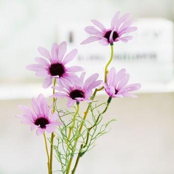 Декоративни цветя в три цвята