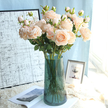 Декоративни цветя в няколко цвята