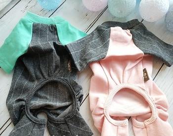 Интересна дреха за кучета с цветна бродерия и джоб в няколко цвята